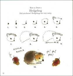 Drawn hedgehog simple