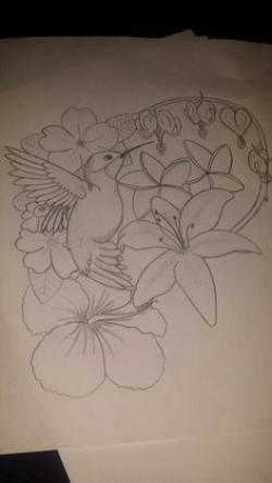 Drawn hummingbird lily flower