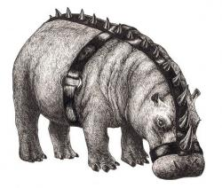 Drawn rhino hippo