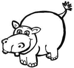 Drawn hippo hippopotamus