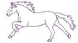 Drawn horse mammal