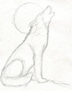 Drawn wolfman pencil easy step by step