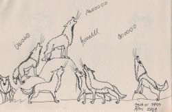 Drawn howling wolf wolf pack