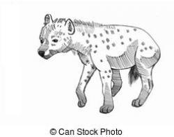 Drawn hyena black and white