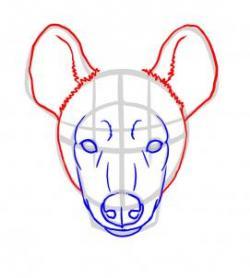 Drawn hyena face