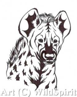 Drawn hyena head