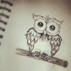 Drawn owlet creative