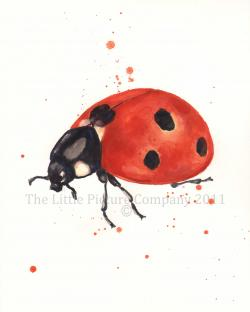 Drawn ladybug watercolor