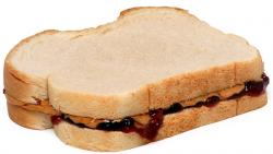 Sandwich clipart lot food