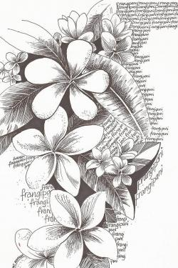 Drawn rainforest plumeria tree