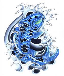 Drawn koi carp blue koi