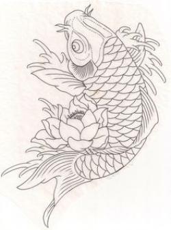 Drawn koi oriental