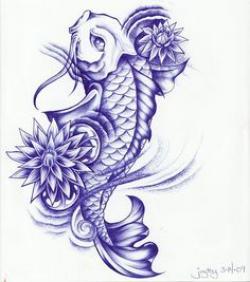 Drawn koi carp khoi