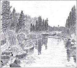 Drawn lake landscape