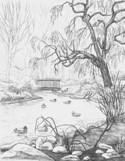 Drawn scenic landscape