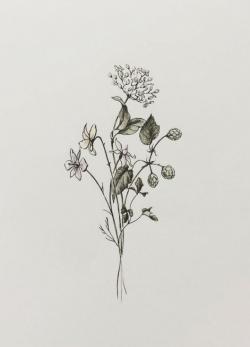 Drawn wildflower hipster