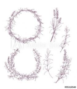 Drawn lavender lavender wreath