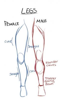 Drawn women female leg