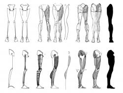 Drawn figurine anatomy