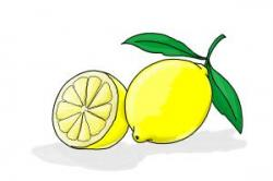 Drawn lemon cartoon