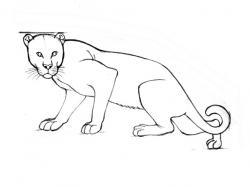 Drawn leopard skin easy