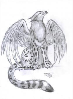 Drawn griffon leopard