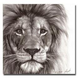 Drawn liquor lion