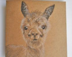 Drawn llama happy llama sad