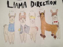 Drawn llama messed up