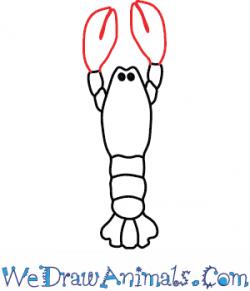 Drawn lobster simple
