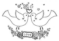 Drawn lovebird i love you