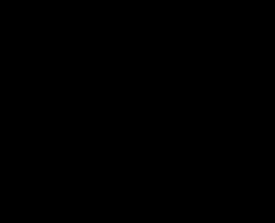 Drawn lovebird outline