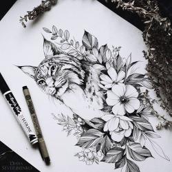 Drawn lynx complex