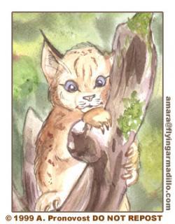 Drawn lynx cute