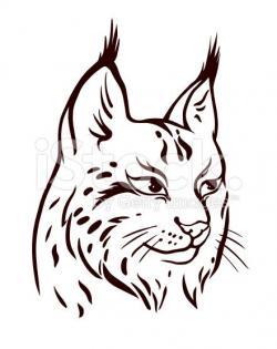 Drawn lynx small