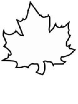 Drawn maple leaf canada