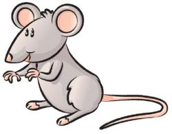 Drawn rodent simple