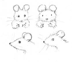 Drawn rodent mouse head
