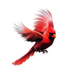 Cardinal clipart flying