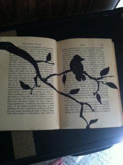 Drawn mockingbird old