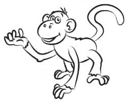 Drawn monkey