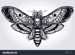 Deaths Head Moth clipart gothic