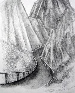 Drawn toad pencil drawing