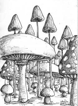 Drawn garden magical garden