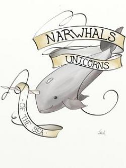 Drawn narwhal angry