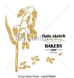 Drawn oat artwork