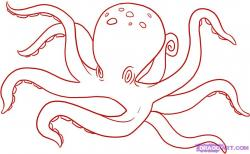 Drawn octopus