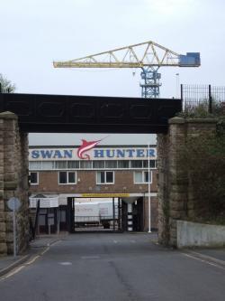 Drawn office swan hunter