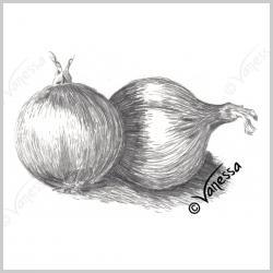 Drawn onion house