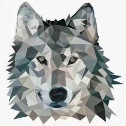 Drawn origami wolf